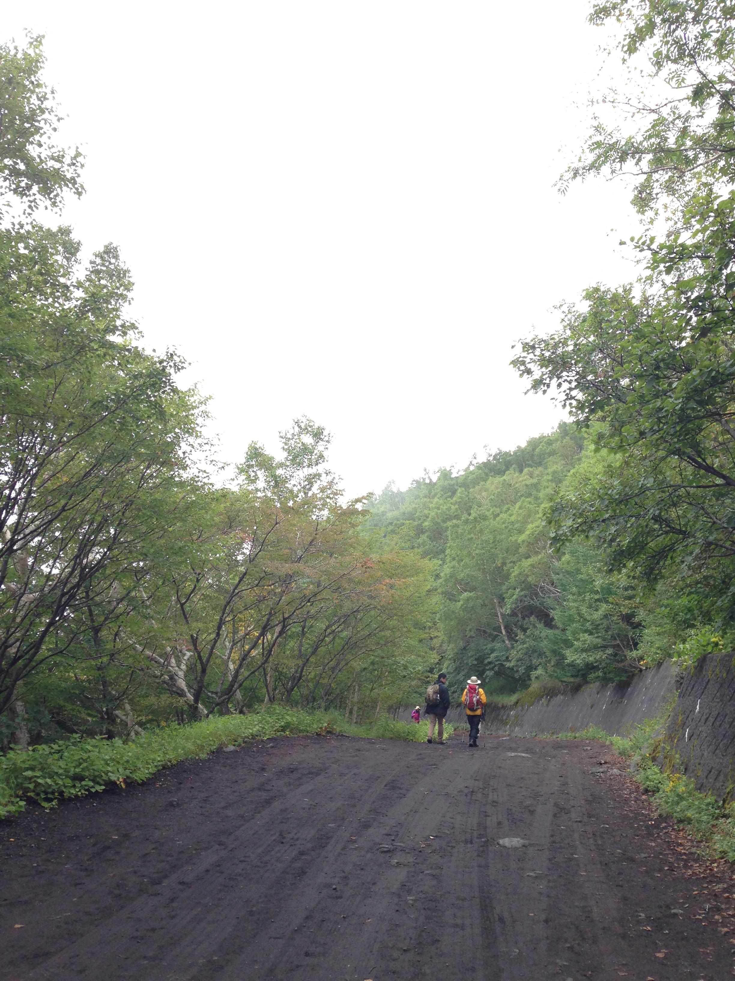 5合目から泉ヶ滝に向かう下り坂